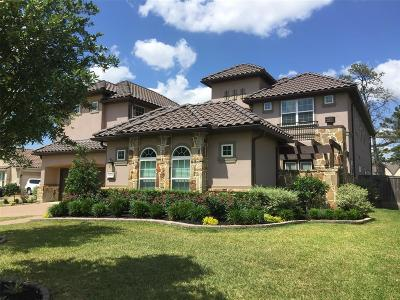 Katy Single Family Home For Sale: 3619 Meandering Spring