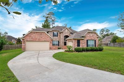 Conroe Single Family Home For Sale: 2172 Summit Mist Drive