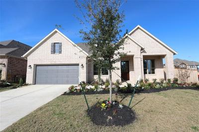 Tomball Single Family Home For Sale: 8826 Havenfield Ridge Lane
