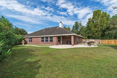 Porter Single Family Home For Sale: 21388 Terreton Springs Drive