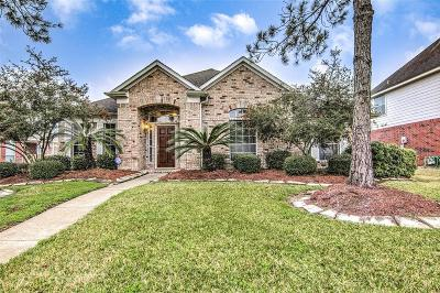 Pearland Single Family Home For Sale: 3919 Southsand Drive