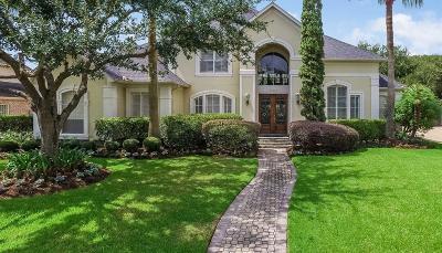 Houston Single Family Home For Sale: 14018 Barnhart Boulevard