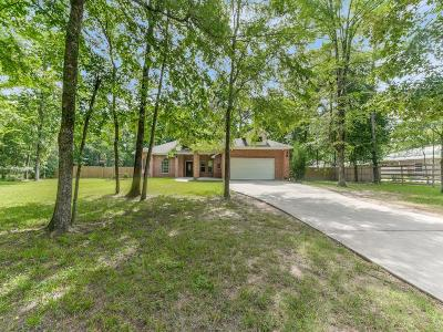 Single Family Home For Sale: 40206 Pipestone Road