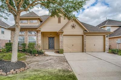 Pearland Single Family Home For Sale: 3707 Gazelle Lane