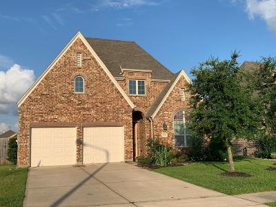 League City Single Family Home For Sale: 723 Mercer Falls Lane Lane