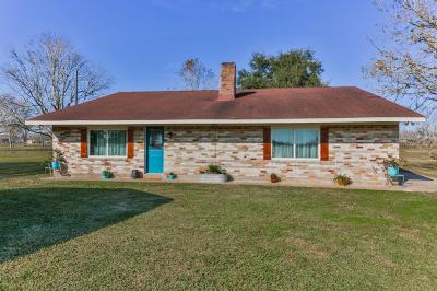Alvin Single Family Home For Sale: 11003 County Road 168