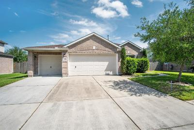 Pearland Single Family Home For Sale: 4305 Brazos Bend Drive