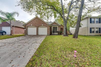 Sugar land Single Family Home For Sale: 16907 Summerfield Ridge Drive