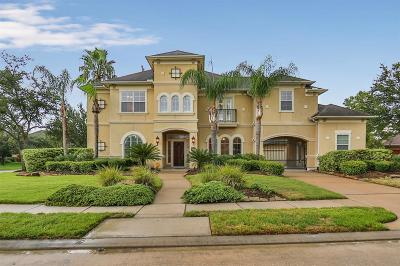 Houston Single Family Home For Sale: 12118 Bellario Lane