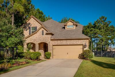 Single Family Home For Sale: 75 Whistling Swan