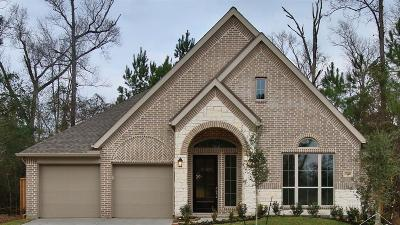 New Caney Single Family Home For Sale: 23649 Sage Villa Drive