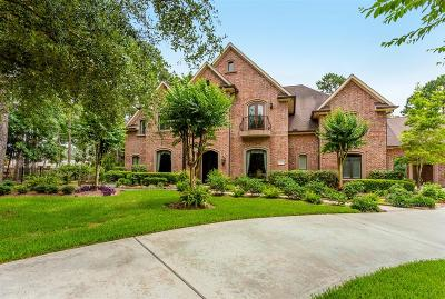 Spring Single Family Home For Sale: 4102 Stratus Court