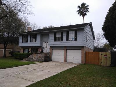 Katy Single Family Home For Sale: 18011 Autumn Trails Lane