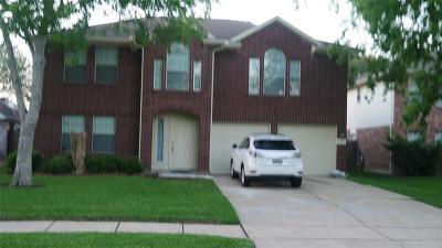 Sugar Land Single Family Home For Sale: 3210 SW Shady Ridge Trail Drive