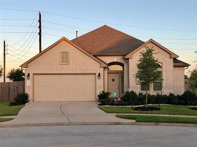 Katy Single Family Home For Sale: 3119 Forest Creek Drive
