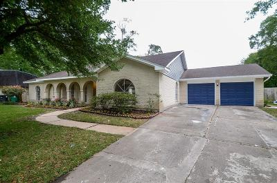 Houston Single Family Home For Sale: 4123 Littleberry Road