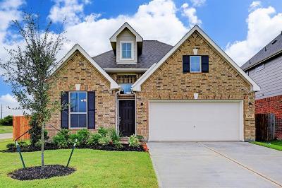 Alvin Single Family Home For Sale: 1051 Cash Street
