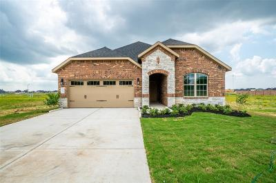 Rosenberg Single Family Home For Sale: 411 Summer Sky Lane