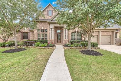 Katy Single Family Home For Sale: 27919 Moss Fern Drive
