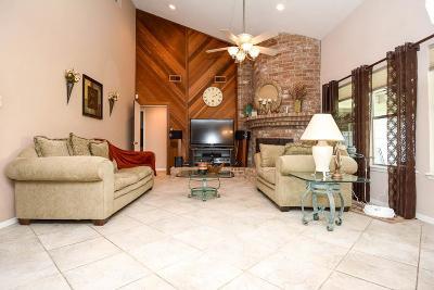Houston Single Family Home For Sale: 1707 Chestnut Ridge Road