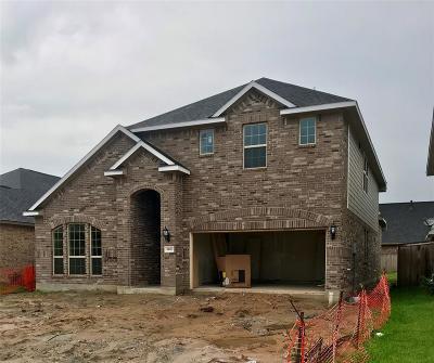 Single Family Home For Sale: 4806 Pecan Arbor Ln Lane