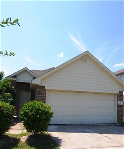 Houston Single Family Home For Sale: 842 Regional Park Drive
