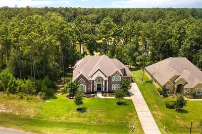 Houston Single Family Home For Sale: 28503 Monterey Cliff Lane