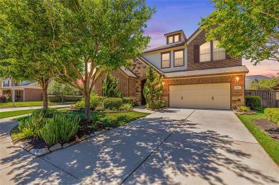 Katy Single Family Home For Sale: 27403 Cinco Terrace Drive