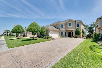 Single Family Home For Sale: 736 Pegasus Lane