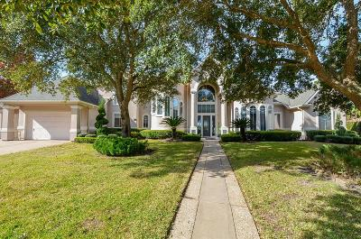 Sugar Land Single Family Home For Sale: 66 Harbor View Drive