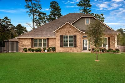 Montgomery Single Family Home For Sale: 8996 Windjammer Lane