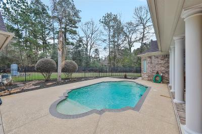 New Caney Single Family Home For Sale: 17429 Saddle Creek