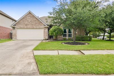 Tomball Single Family Home For Sale: 19202 Poplar Trails Ln Lane