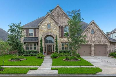 Houston Single Family Home For Sale: 13619 Breakwater Path Loop