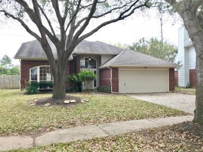Sugar Land Single Family Home For Sale: 4318 E Meadows Drive