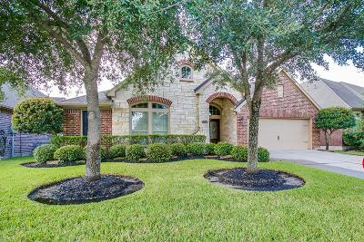 Pearland Single Family Home For Sale: 13610 Summer Cloud Lane