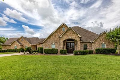 Beaumont Single Family Home For Sale: 8360 Anastasia Avenue