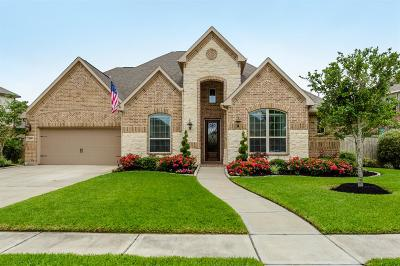 Pearland Single Family Home For Sale: 3418 Maple Harvest Lane