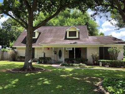 Sweeny Single Family Home For Sale: 904 Avenue B Avenue