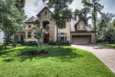 Montgomery Single Family Home For Sale: 115 Windfair Loop
