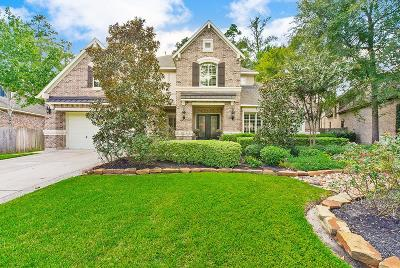 The Woodlands Single Family Home For Sale: 38 S Garnet Bnd