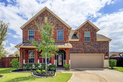 Katy Single Family Home For Sale: 2203 Wolf Creek Court