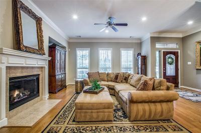 The Woodlands Condo/Townhouse For Sale: 6 Ginger Jar Street