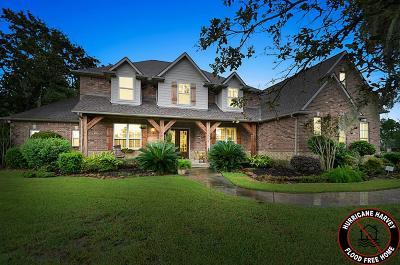 Houston Single Family Home For Sale: 14610 Iron Horseshoe