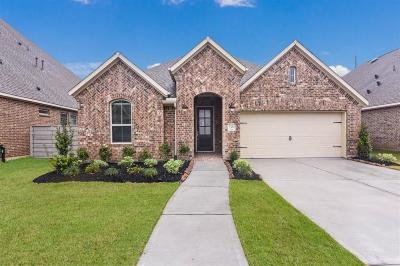 Manvel Single Family Home For Sale: 2551 Deerwood Heights Lane