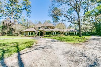 Tomball Single Family Home For Sale: 23025 Jane Road