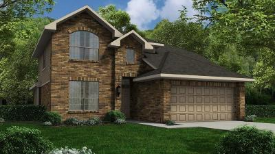 Alvin Single Family Home For Sale: 5179 Dry Hollow Lane