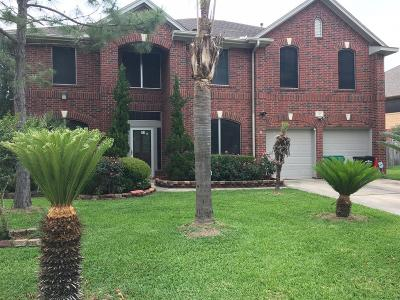 Houston Single Family Home For Sale: 315 Banter Trails Drive