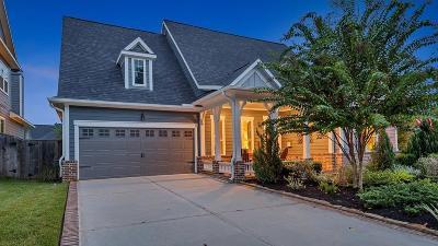 Montgomery Single Family Home For Sale: 102 Jackson Park Street