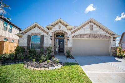 Lakes Of Savannah Single Family Home For Sale: 5115 Maiden Rose Court